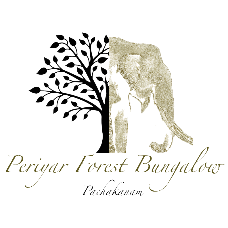 Periyar Forest Bungalow